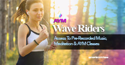 AYM Wave Rider Archives Access